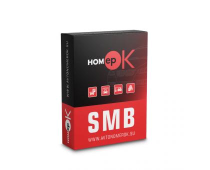 ПЗ для розпізнавання автономерів HOMEPOK SMB 2 канали для керування СКУД